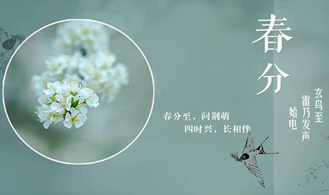 二十四节气・春分丨宏华自动茶水炉用水为您守护每一被健康水
