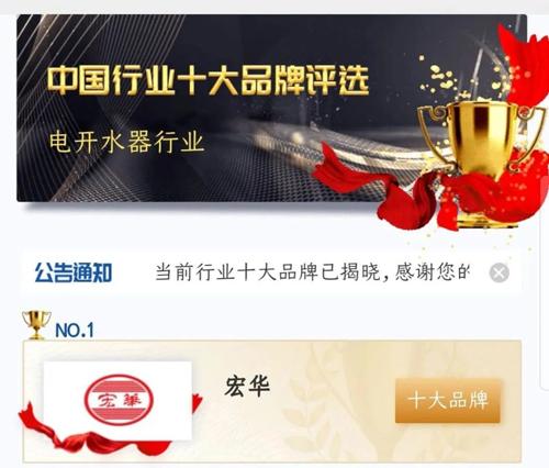 中国行业十大品牌评选